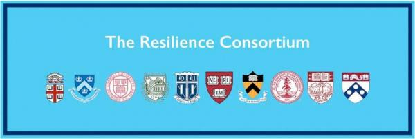 Resilience consortium header